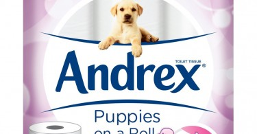 Andrex Puppies On A Roll
