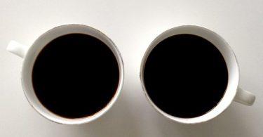 Free Wild Chaga Coffee
